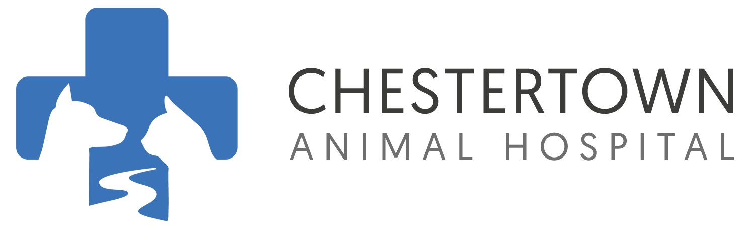Chestertown Animal Hospital
